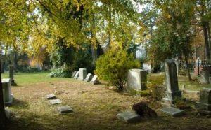 Chapel Hill Old Cemetery Hero Mold Company Chapel Hill, NC