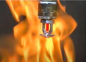Fire Suppression Sprinkler Head Hero Mold Company