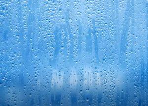 High Humidity Window Pane Hero Mold Company